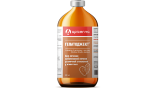 Hepatoject 500 ml